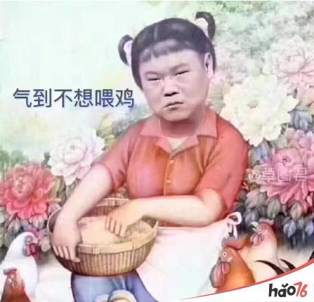 气到不想喂鸡是什么意思_岳云鹏气到不想喂鸡表情包下载图片